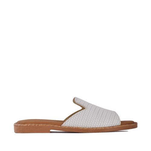 Kalogeropoulos Shoes Γυναικεία Παντόφλα 50-02-22